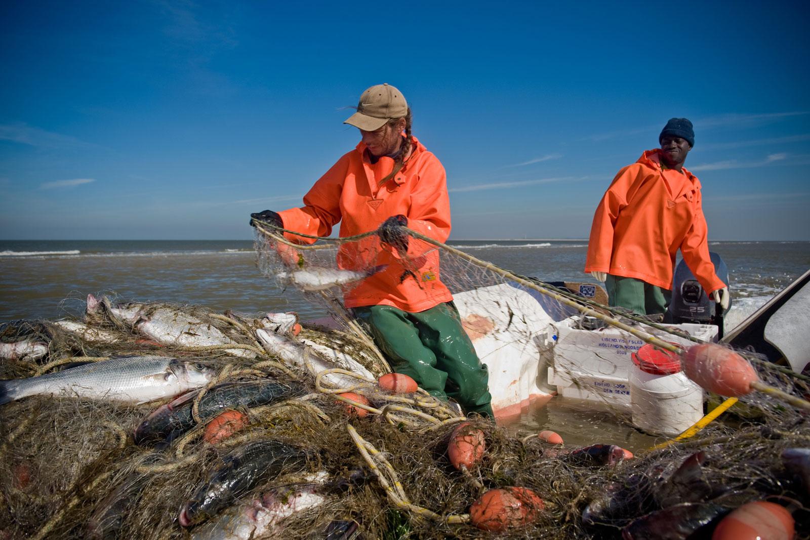 Goede Keukens Groningen : Goede Vissers met Waddengoud vis op Lokaal & Lekker